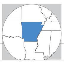 Arkansas state icon
