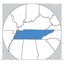 Tennessee state icon